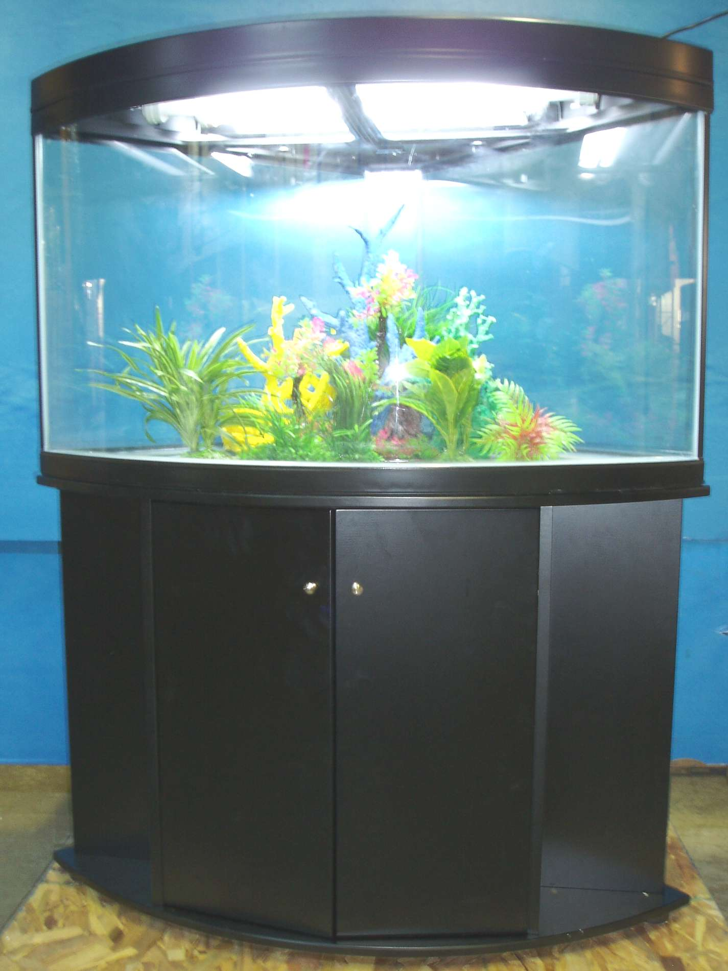 Gv corner for Corner fish tank for sale