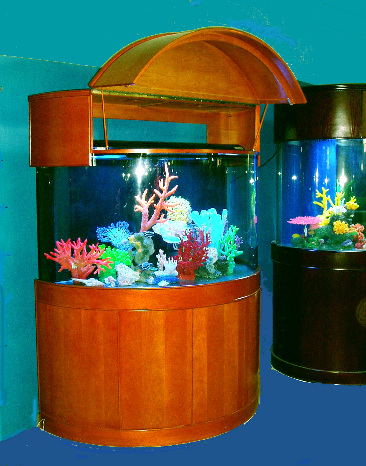 Moon View Half Cylinder Glass Aquariums