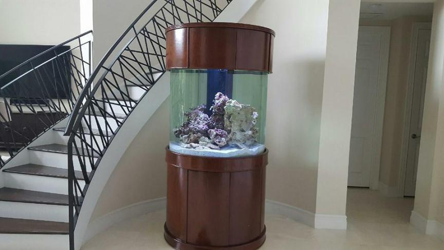 Mv Cylinder Moon View Glass Aquariums