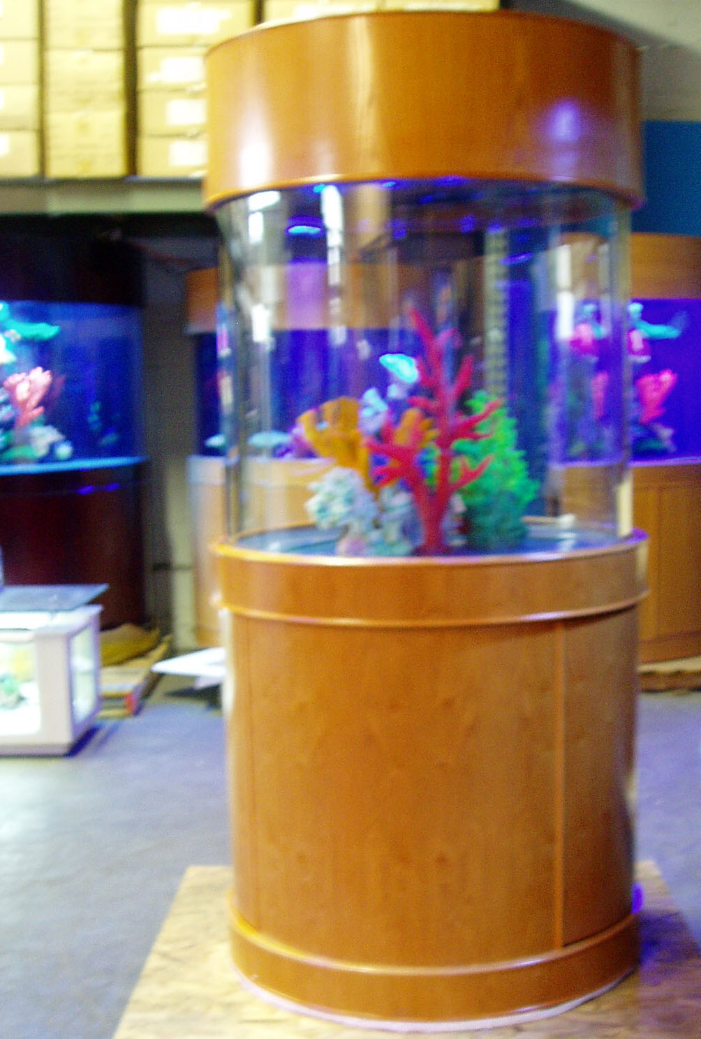 New page 13 ocean view cylinder glass aquarium for Cylindrical fish tank