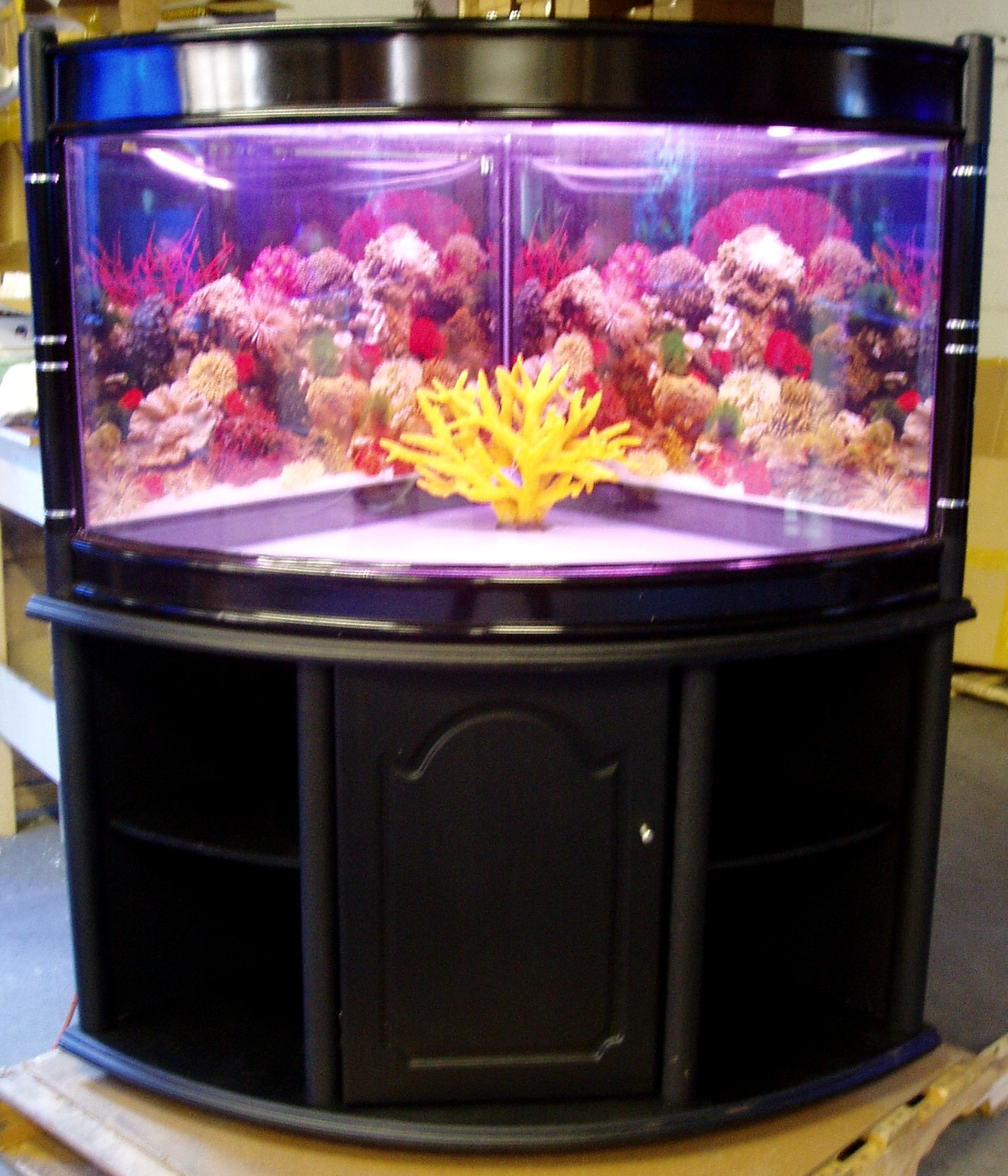 98 gallon corner aquarium, 90? seamless curve glass (Quarter cylinder ...