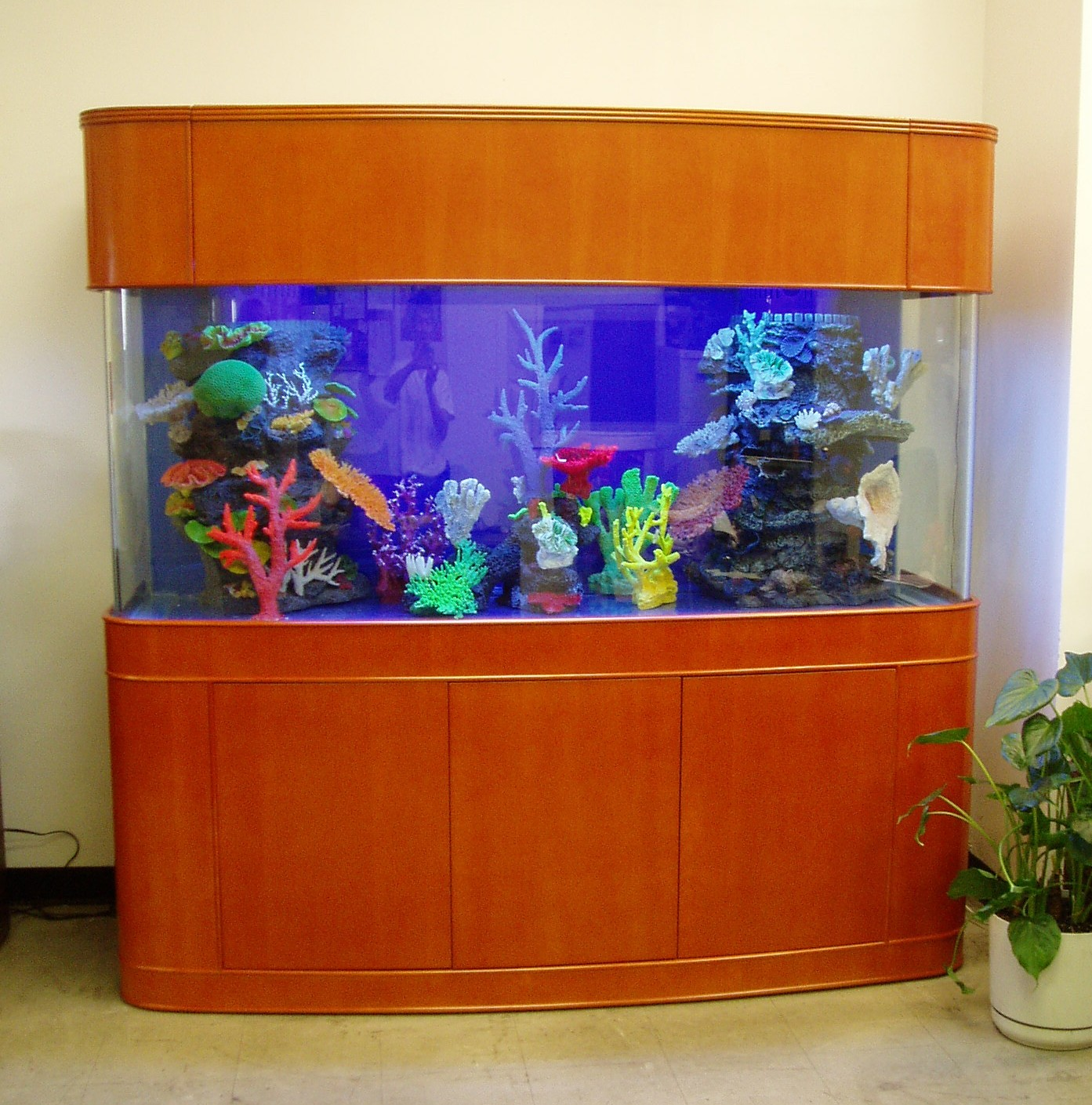 New Ideas Of Bow Front Fish Tank - Best Home Design Ideas and ...