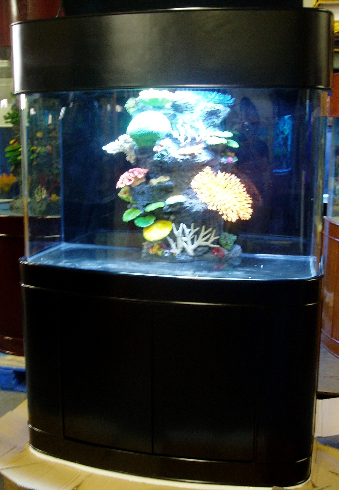 Ov bow front 2 for Bow front fish tank