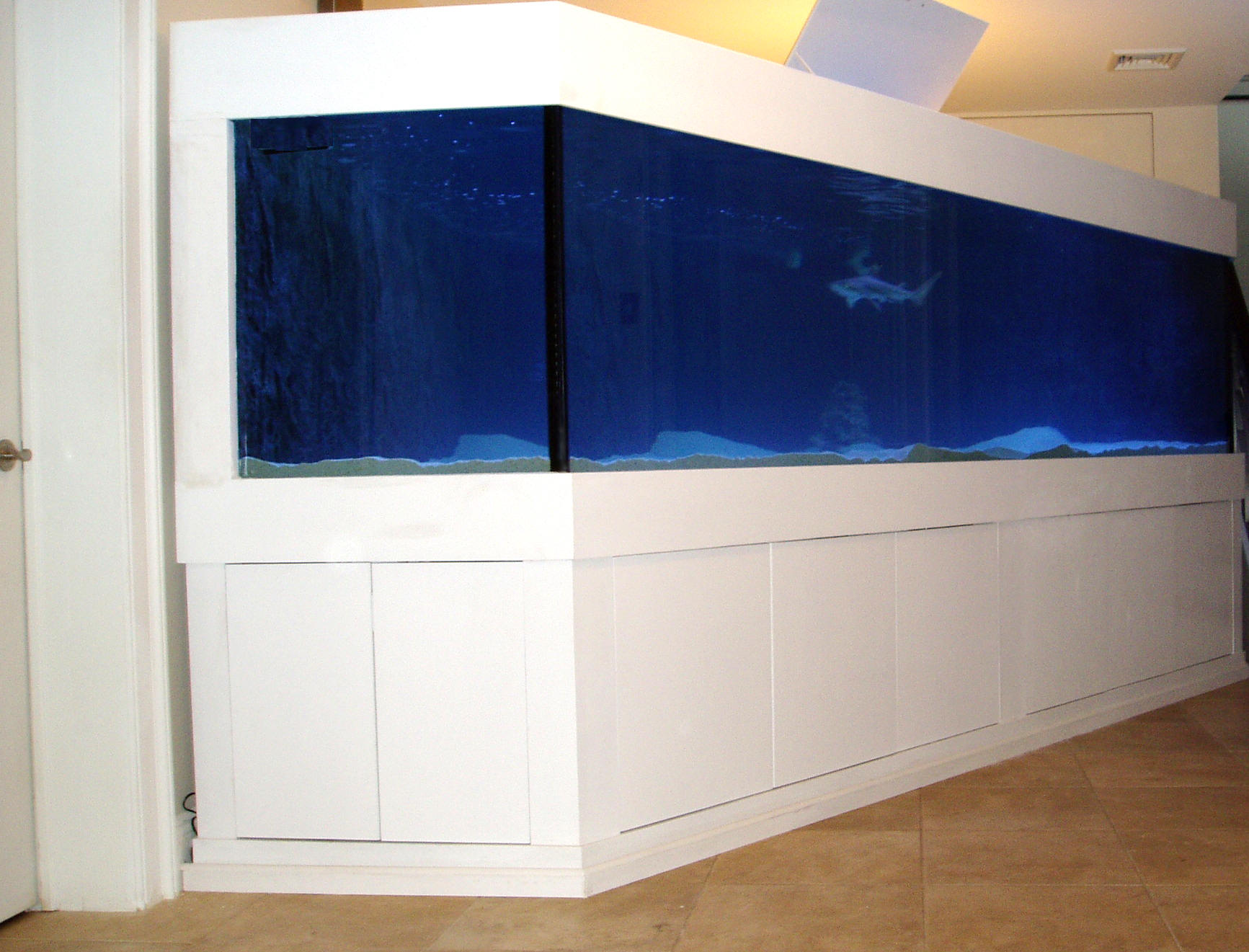 1 000 gallon aquarium for sale complete custom super