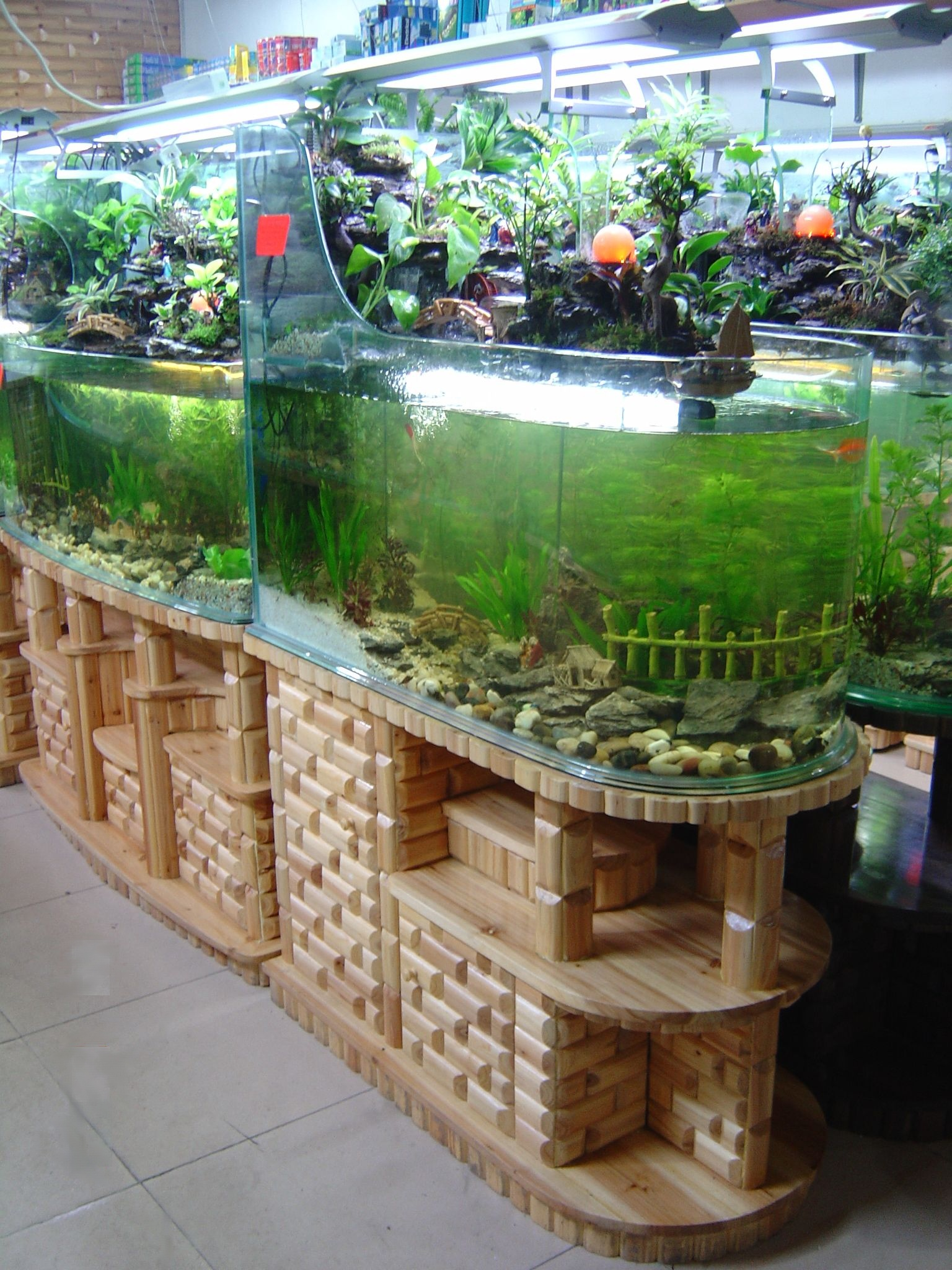 Aquarium With Waterfall