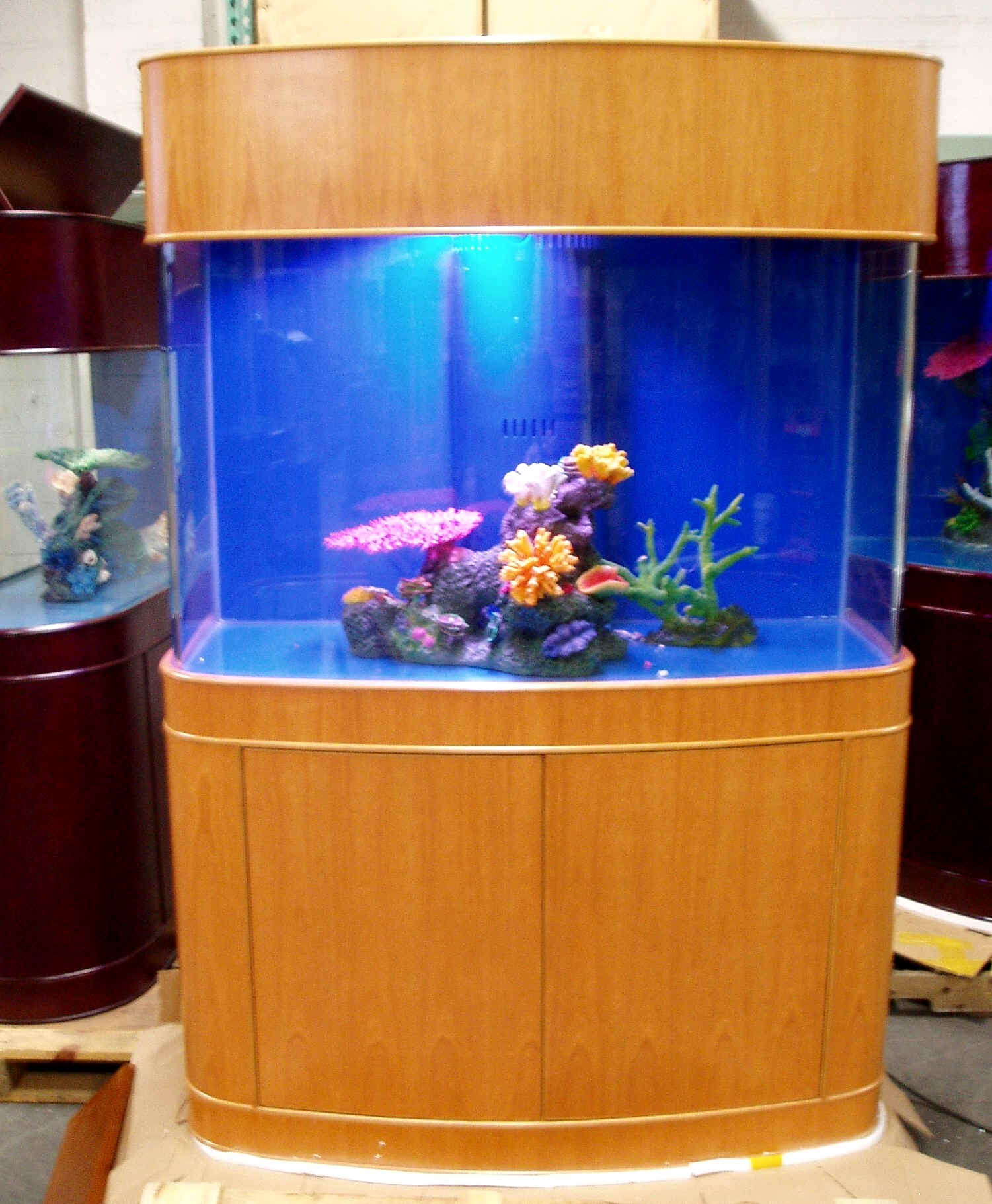 New page 9 ocean view seamless bowfront glass aquarium for Seamless fish tank