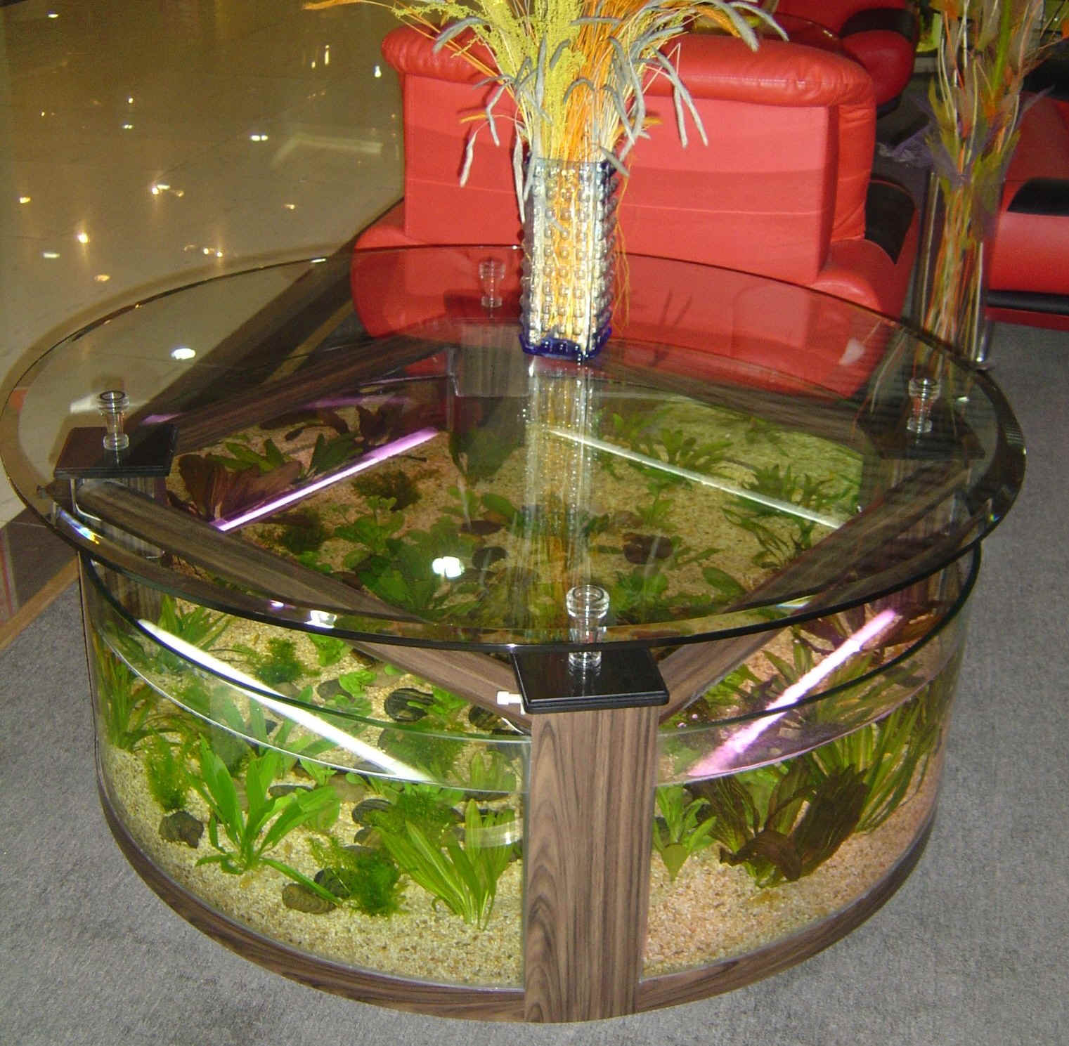 Www 4fishtank com coffee table aquariums new york