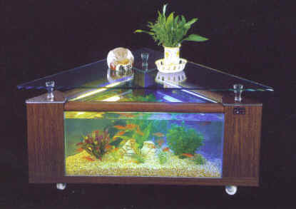 Triangle+Fish+Tank www.4FishTank.com - coffee table aquariums ...