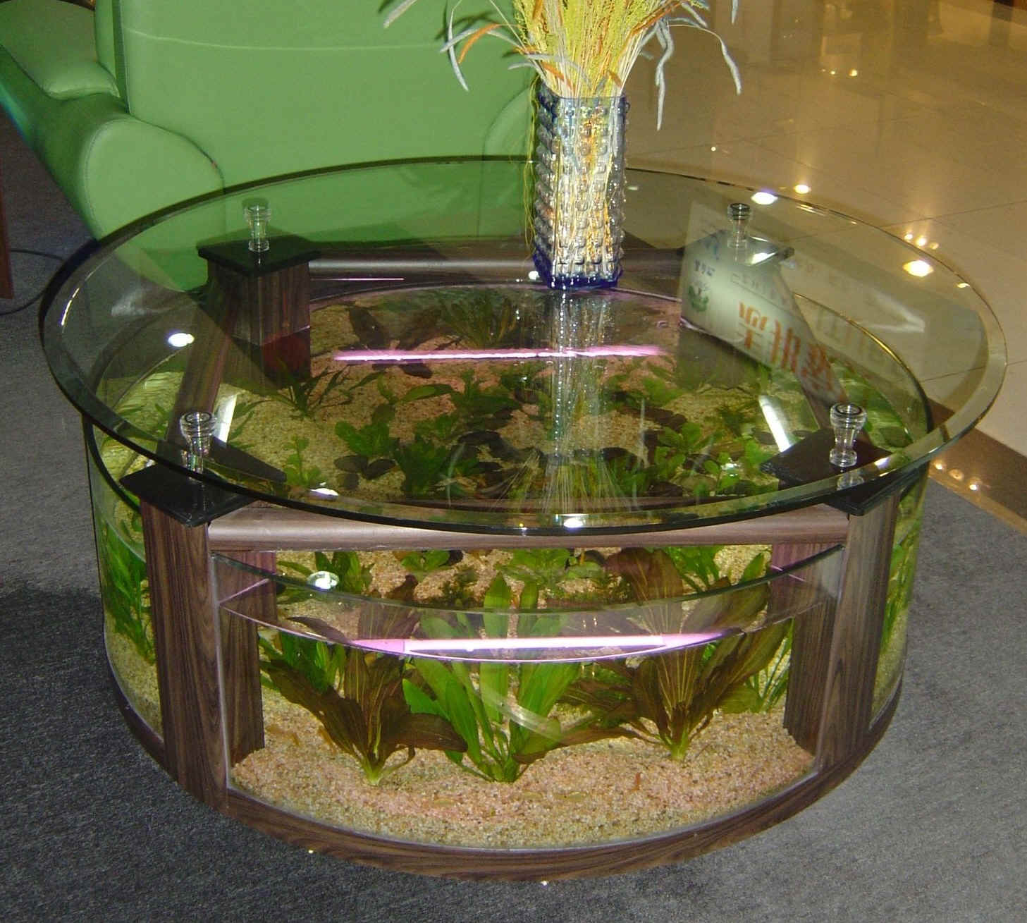 Used aquarium fish tank for sale - Half Circle Desks
