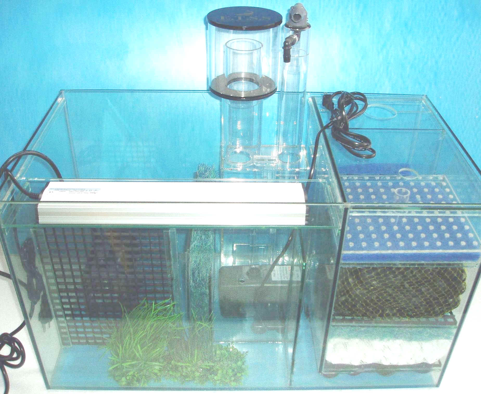 Filters And Pumps Page Ecological Filtration System
